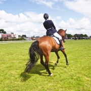 asymmetry asymmetrical dressage riding tips