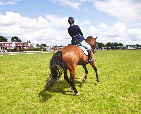 asymmetry asymmetrical dressage riding tips